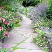 Як оформити садові доріжки: строкато і привабливо
