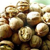 Як приготувати суміш для лактації з волоських горіхів