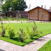 Як доглядати за газонної травою