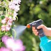 Як захистити рослини від шкідників і хвороб народними засобами