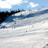 Які існують види гірськолижних трас