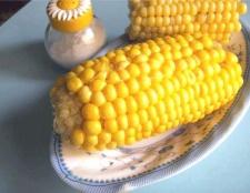 Чим корисна кукурудза