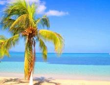 Що цікавого подивитися на Ямайці