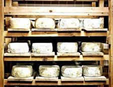 Що корисніше, сир або бринза