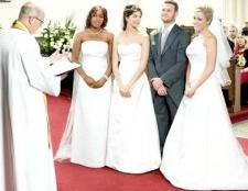 Що таке полигамность