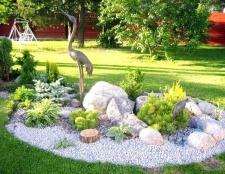 Як облаштувати сад каменів на своїй ділянці