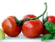 Як отримати хороший урожай помідорів