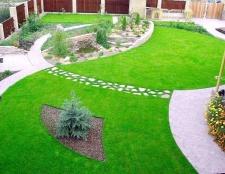 Як правильно сіяти газонну траву