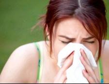 Як проявляється алергія на собак