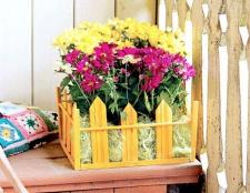 Як зробити ящик для рослин