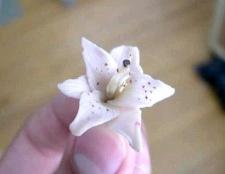 Як зробити лілію з полімерної глини