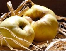 Як зберегти у свіжому вигляді яблука до весни