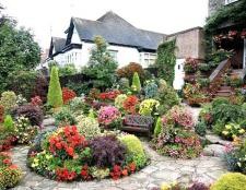 Як все розмістити на садовій ділянці