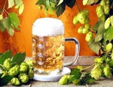 Як вибрати гарне чеське пиво