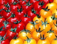 Які овочі протипоказані при вагітності