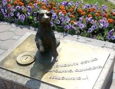 Які пам'ятники тваринам існують в росії