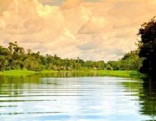 Які річки є в південній америці