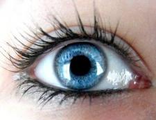 Який колір волосся підходить до сіро-блакитного кольору очей