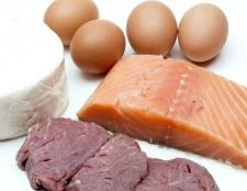 Яку їжу називають білкової