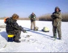 Яку рибу ловлять в січні?