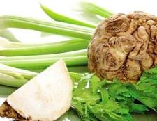 Кореневої селера: прості рецепти корисних страв