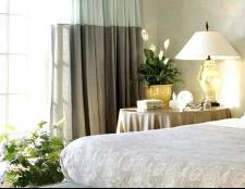 Кращі кімнатні рослини для спальні
