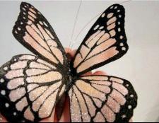 Незвичайна метелик з органзи