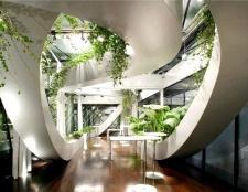 Підбір кімнатних рослин з енергетики