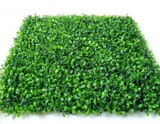 Переваги синтетичної трави перед натуральної