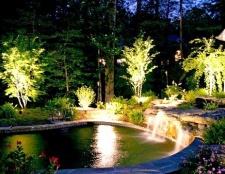 Садове освітлення: як підсвітити доріжки, рослини та водойми