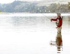 Поради рибалці: як навчитися розуміти водойму?