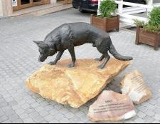 В яких містах поставлені пам'ятники тваринам